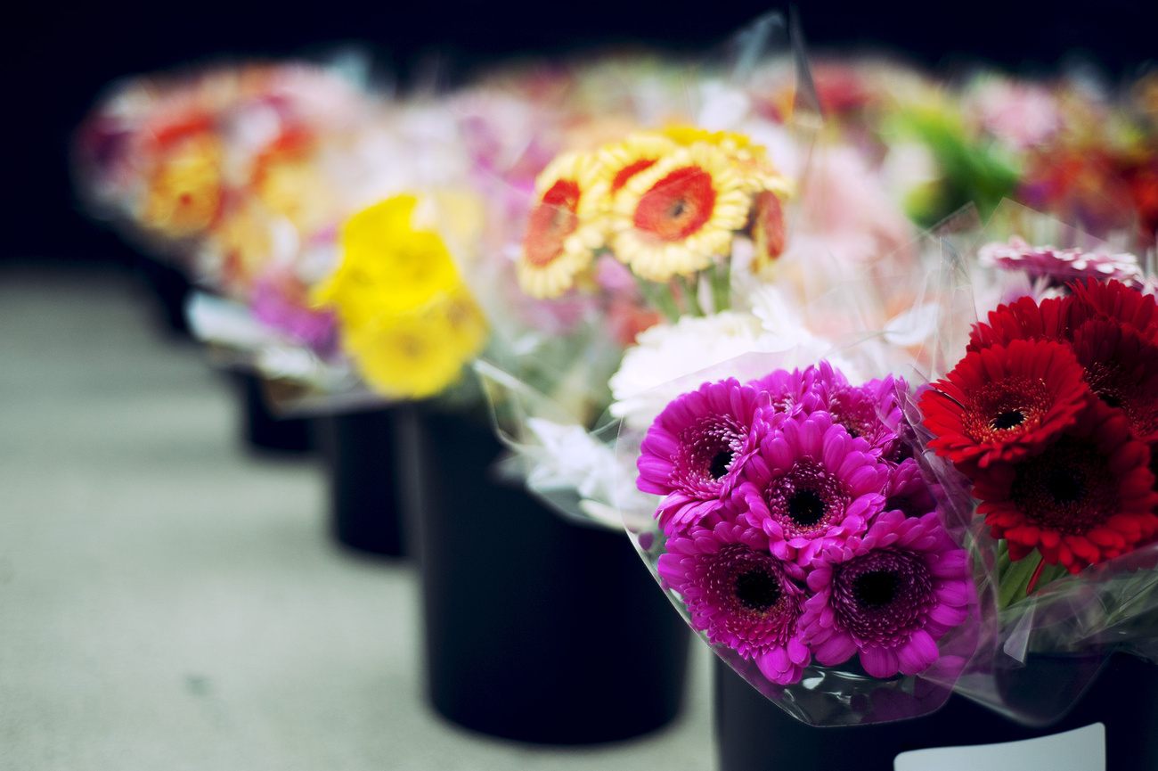 The top 25 flower shops in Toronto by neighbourhood