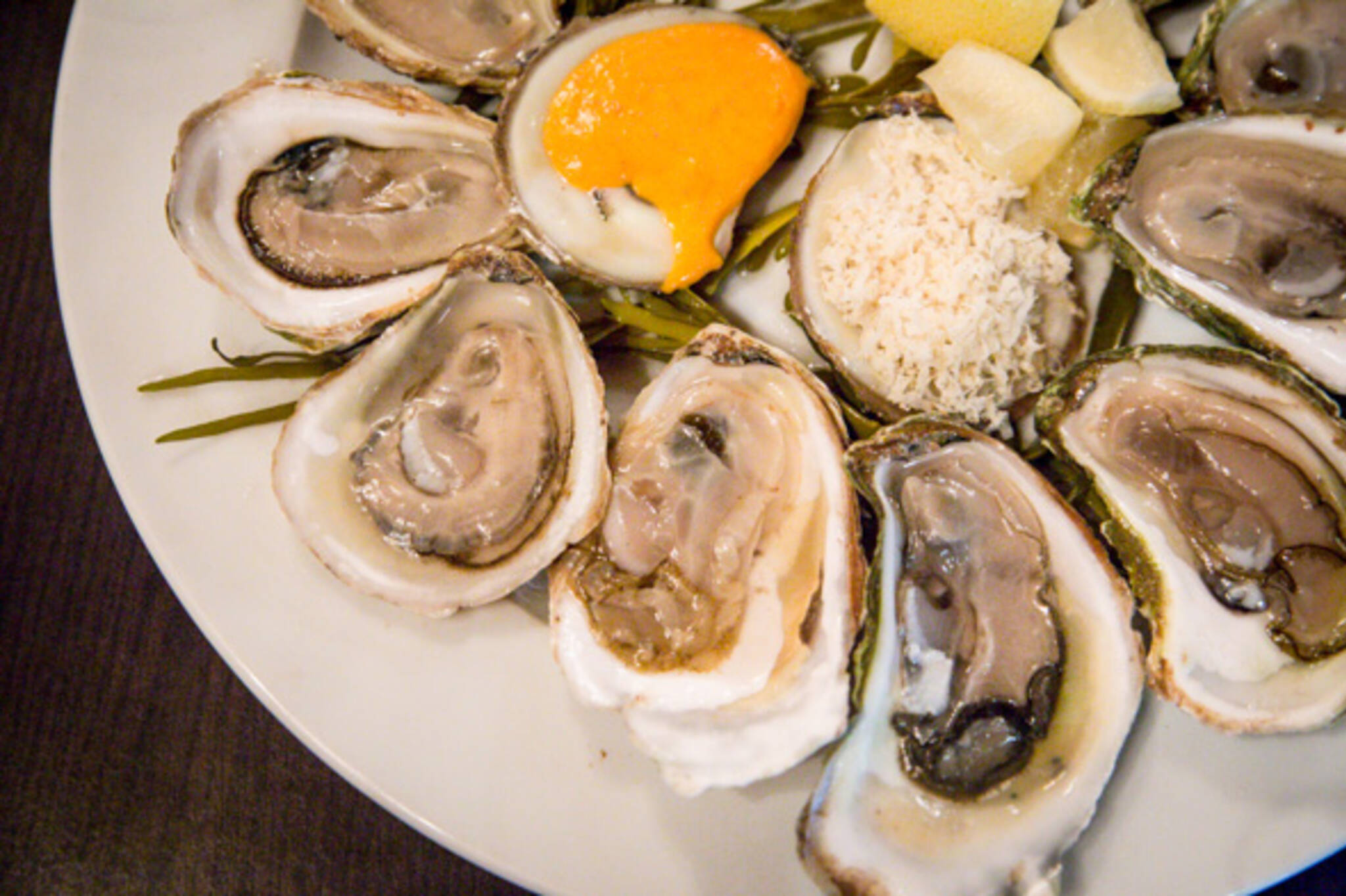 oysters toronto