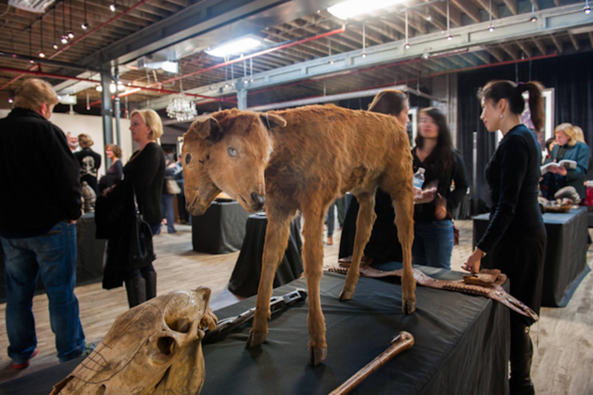 billy jamieson auction toronto