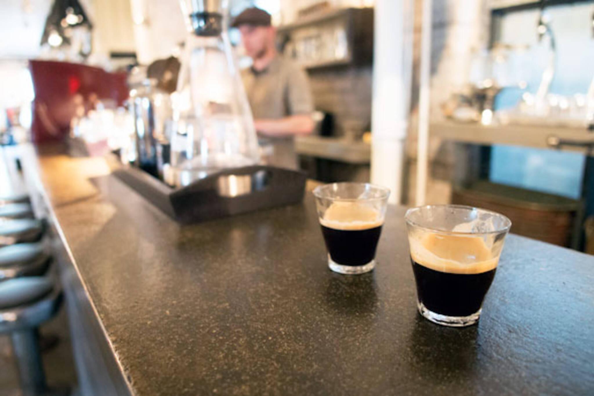 cafe lavish squalor