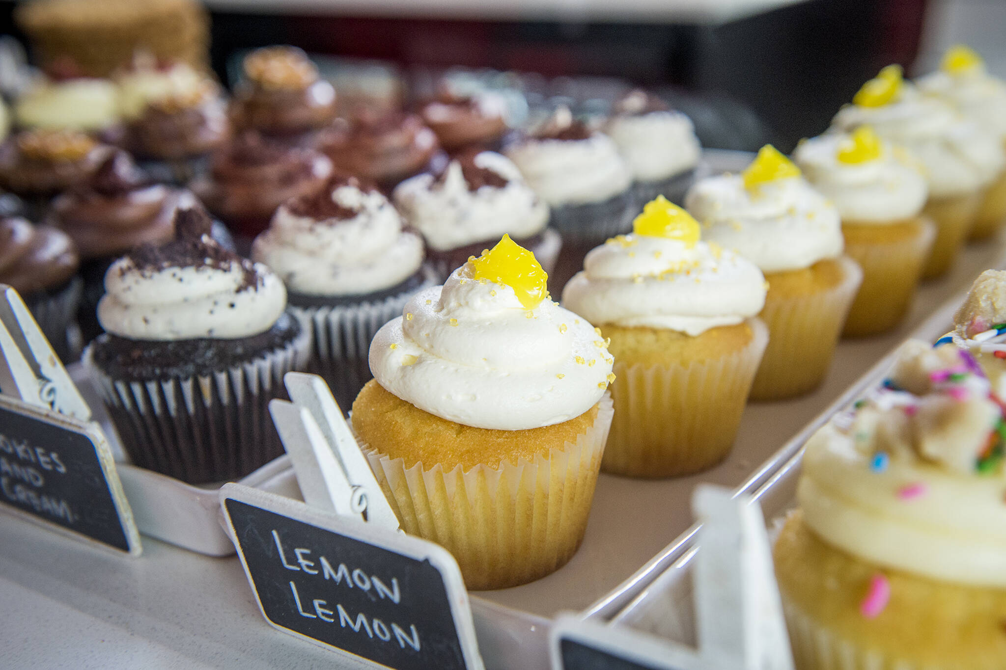 The Best Cupcakes In Toronto