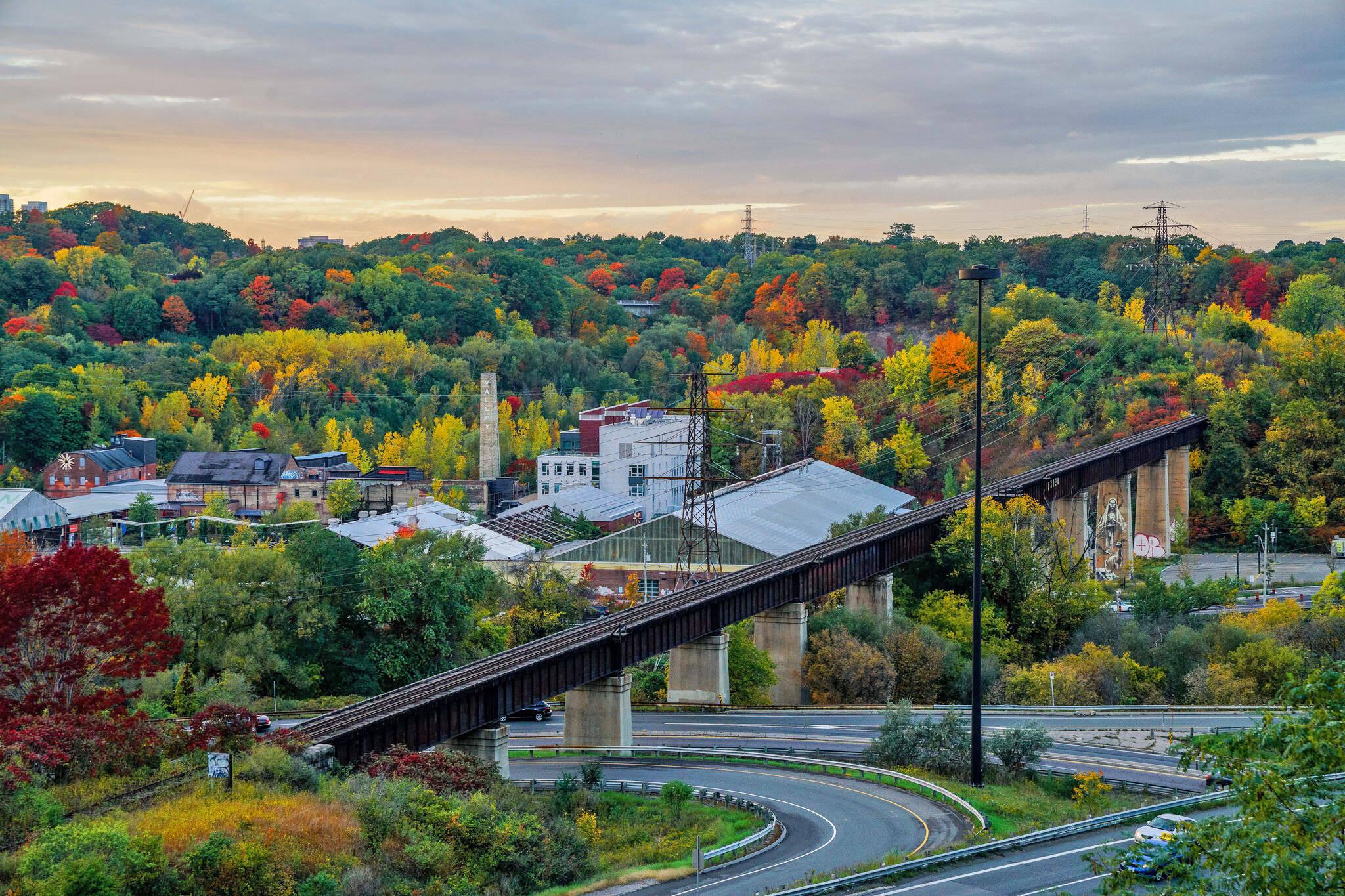 fall colours peak toronto