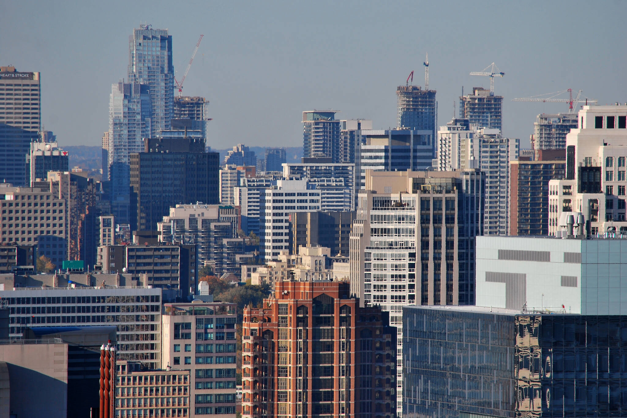 how to look for apartments to rent in toronto
