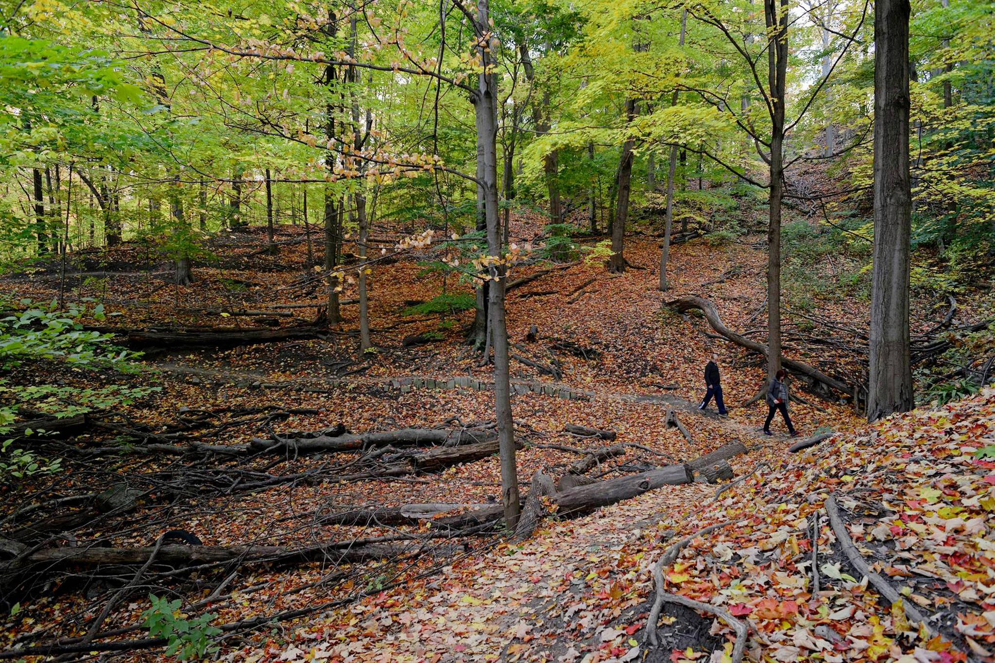 walking trails toronto