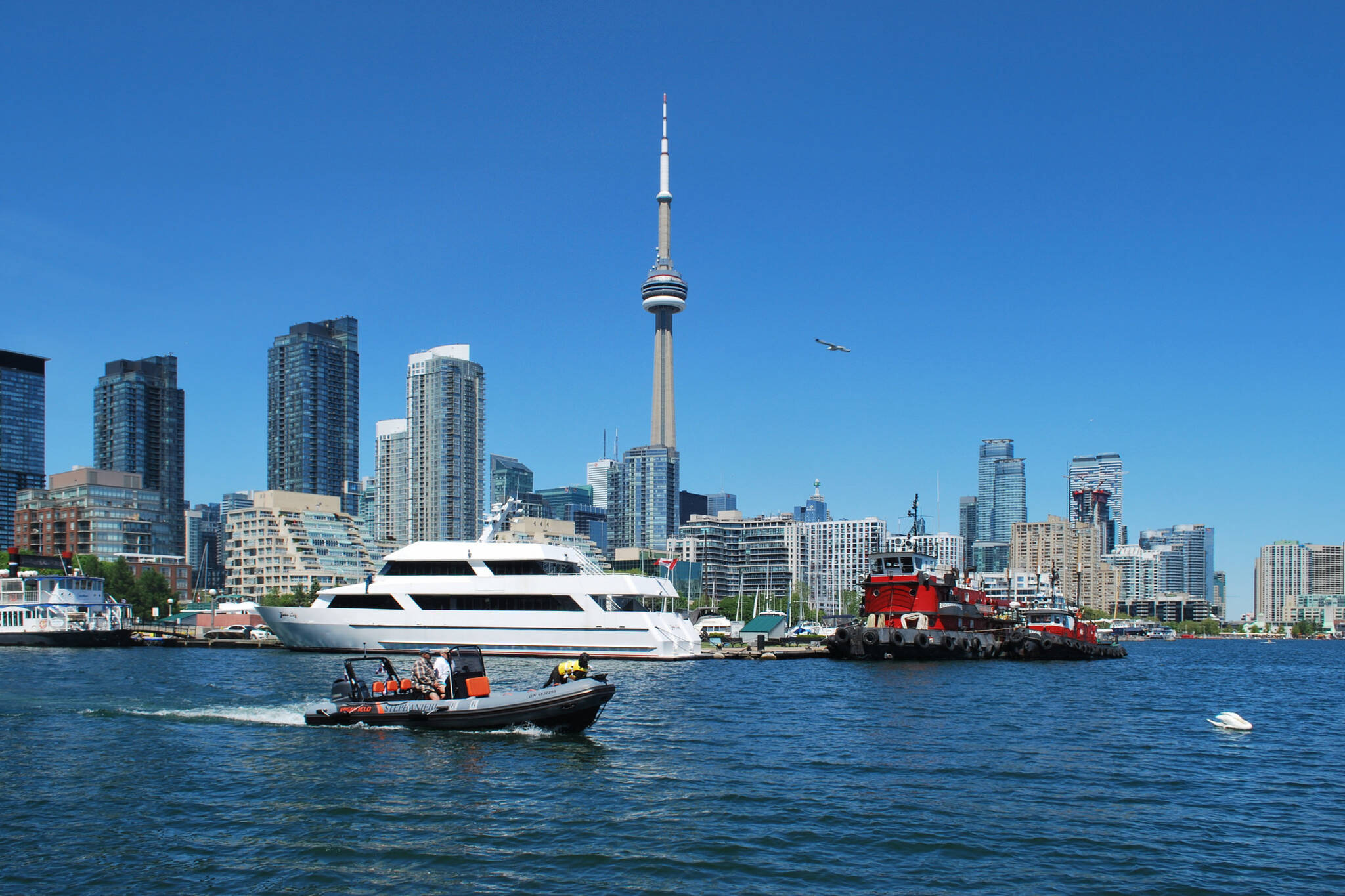 things about toronto