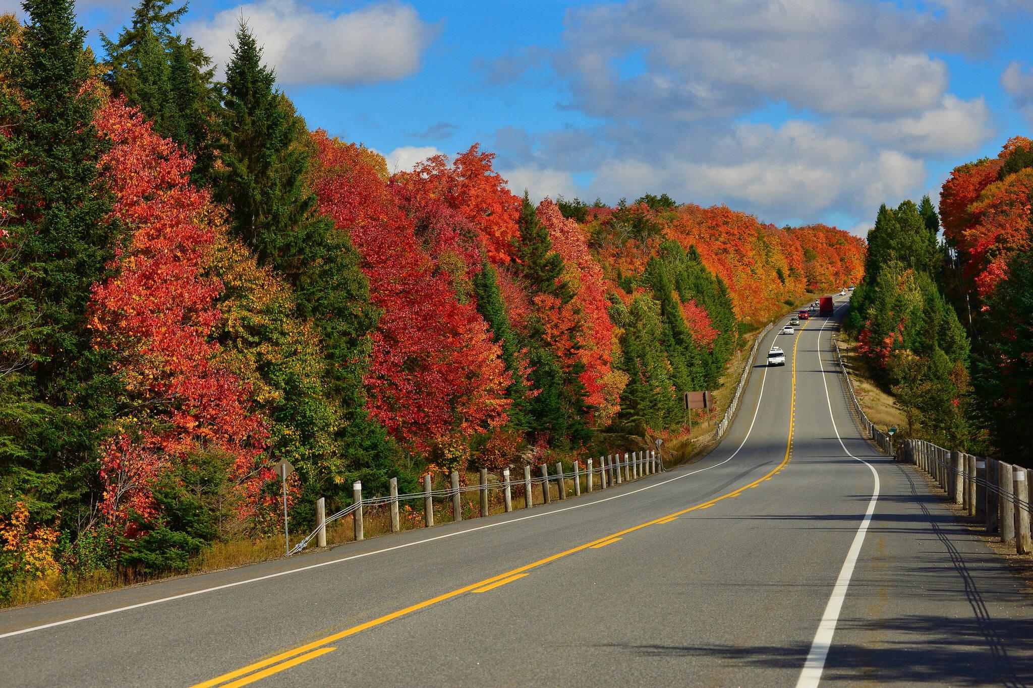 fall colours ontario