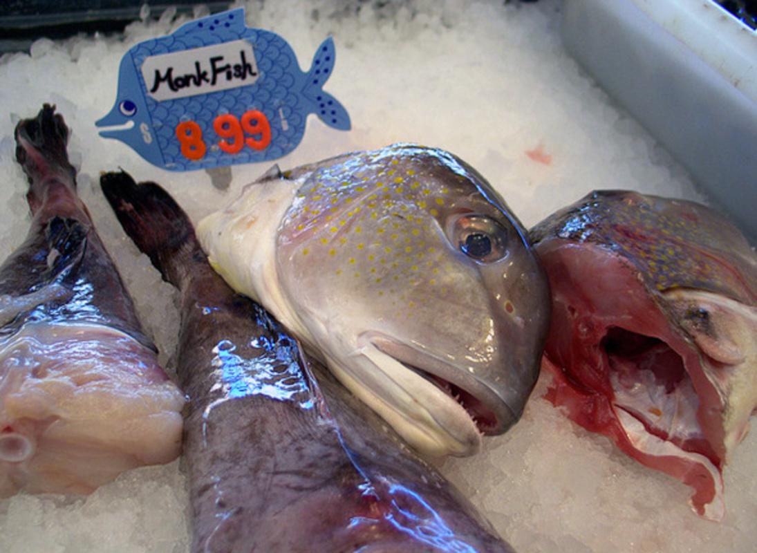 New Seaway Fish Market Rats