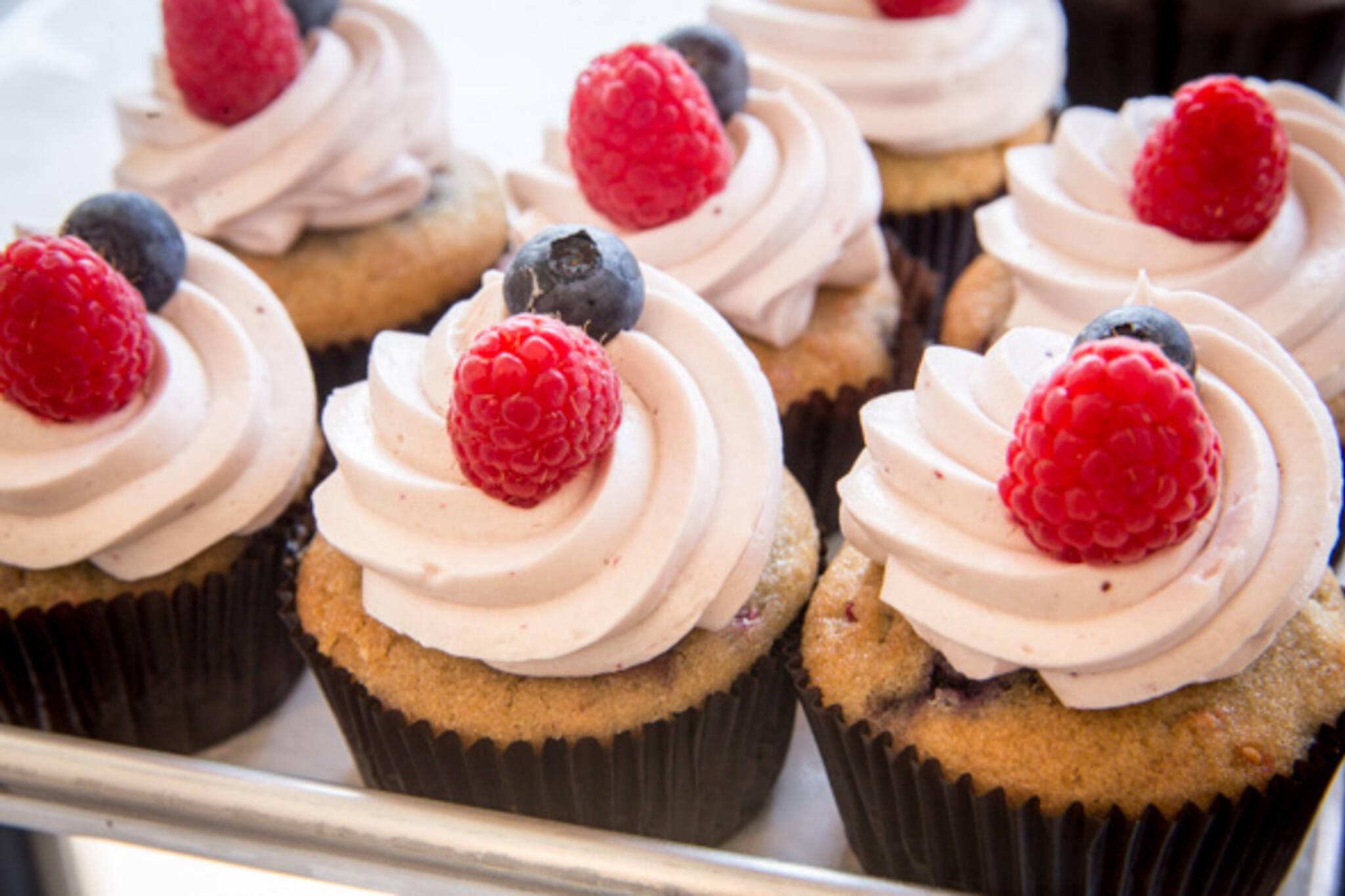vegan cupcakes toronto
