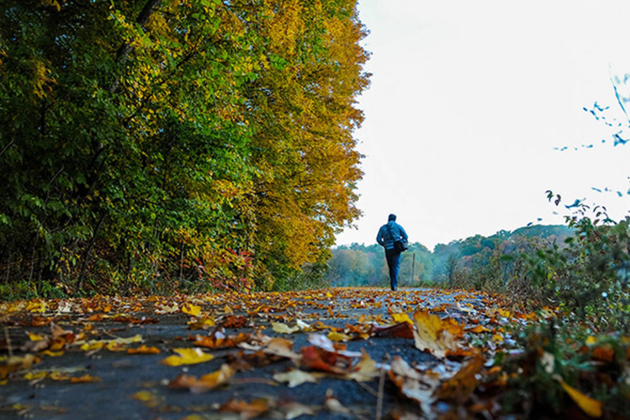 walk toronto