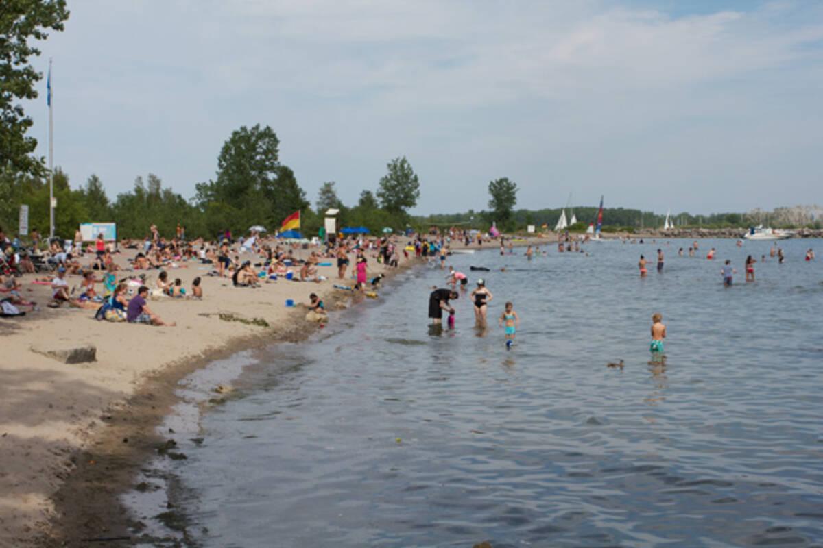 Toronto Beaches Ward S Island Beach