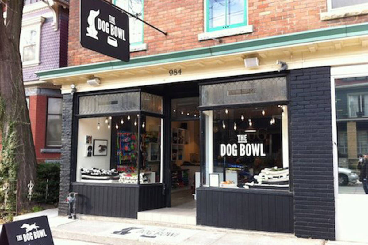 The best pet stores in toronto for The best boutiques