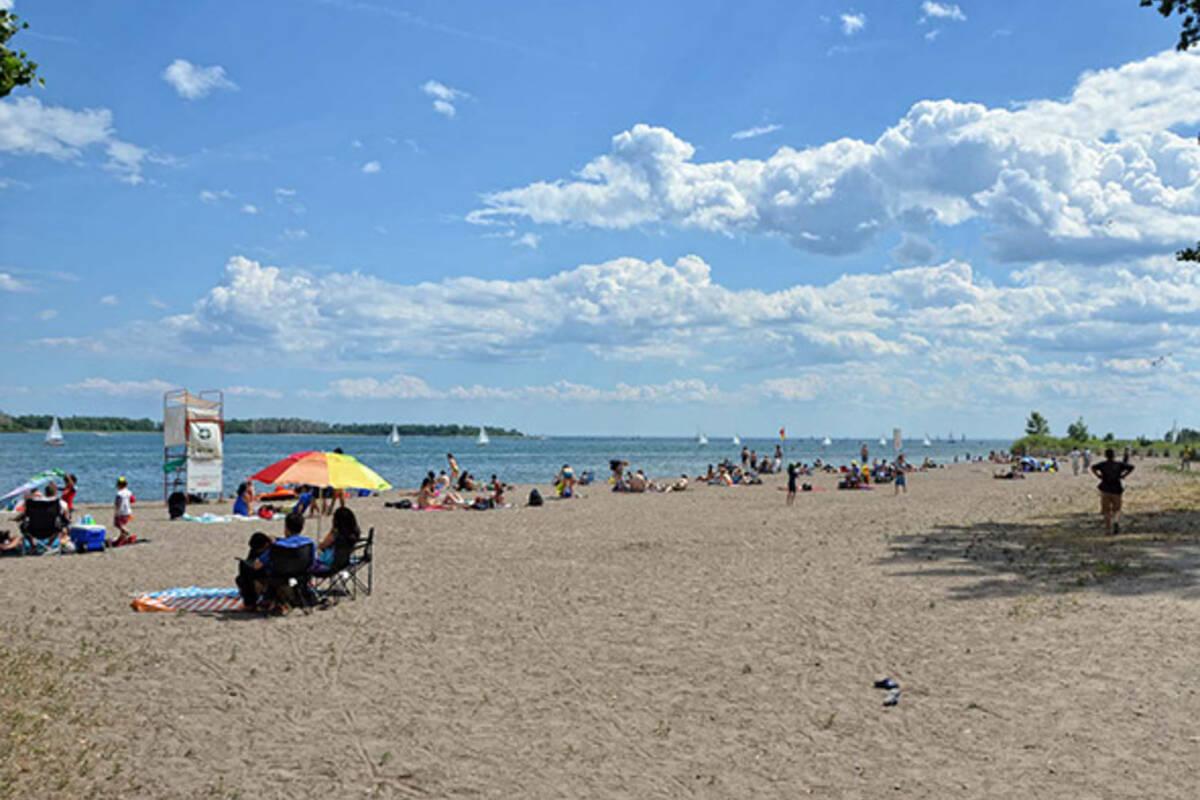 Balmy Beach Dog Park