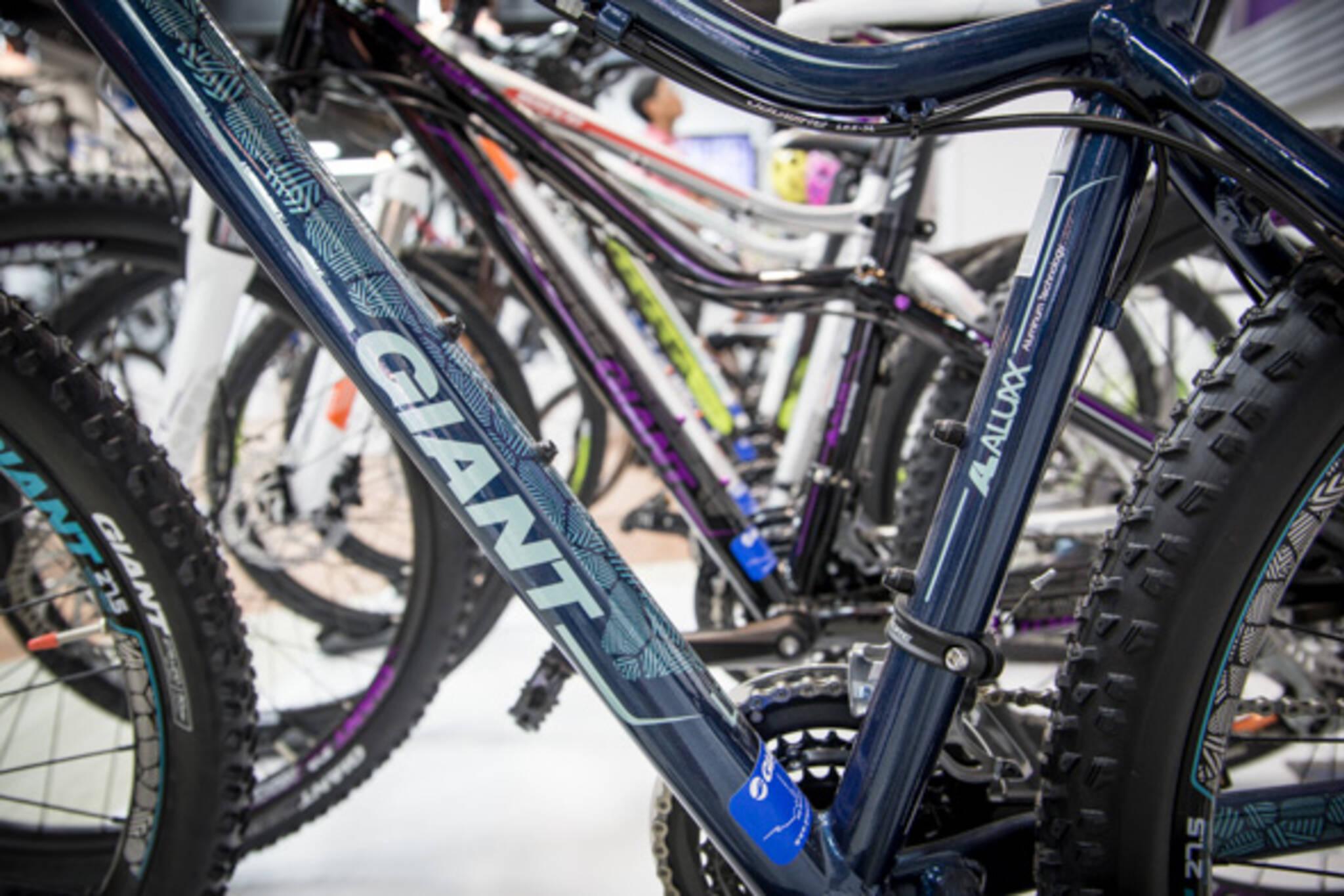 giant bicycles toronto