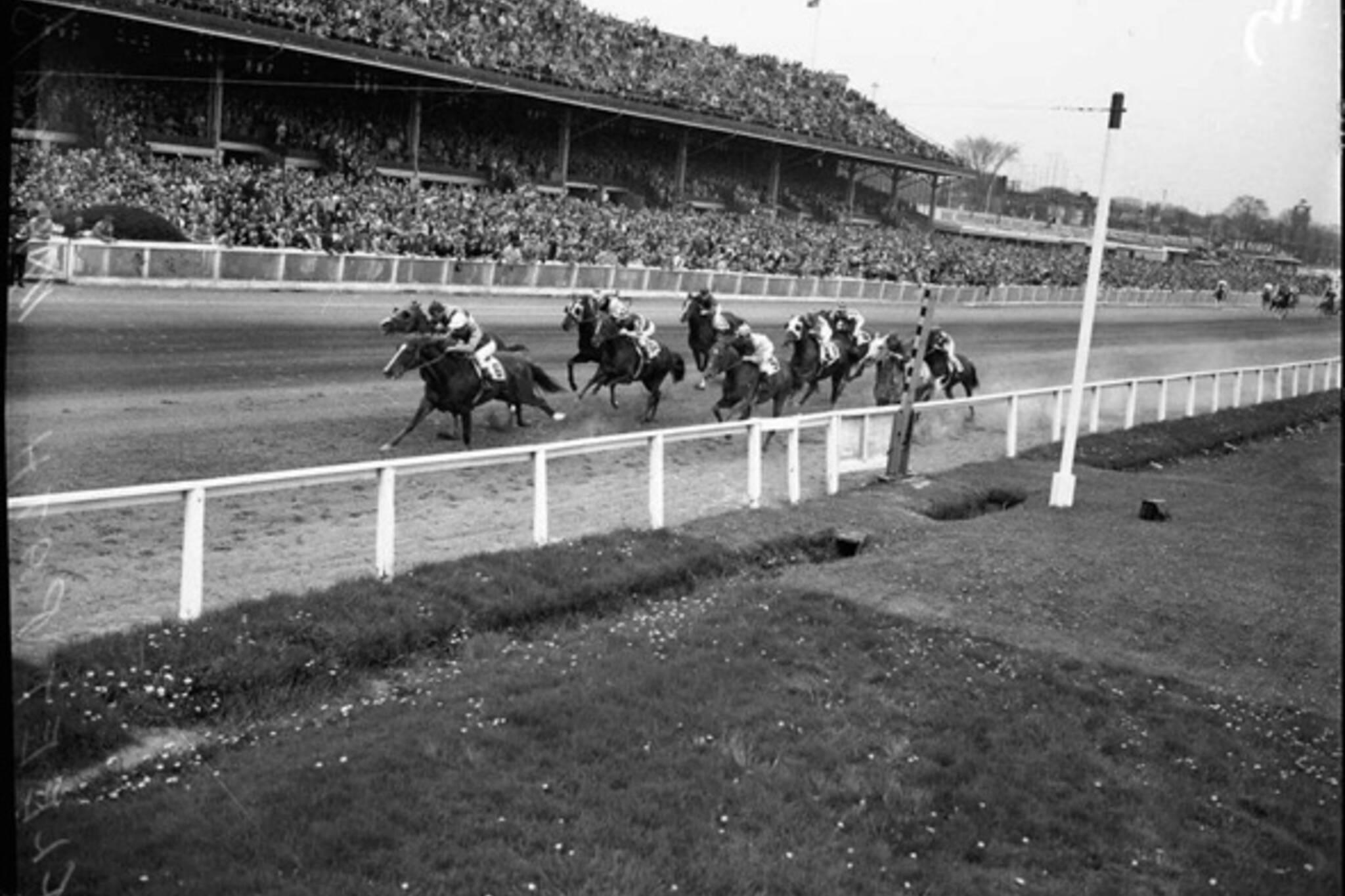 Horse racetracks Toronto