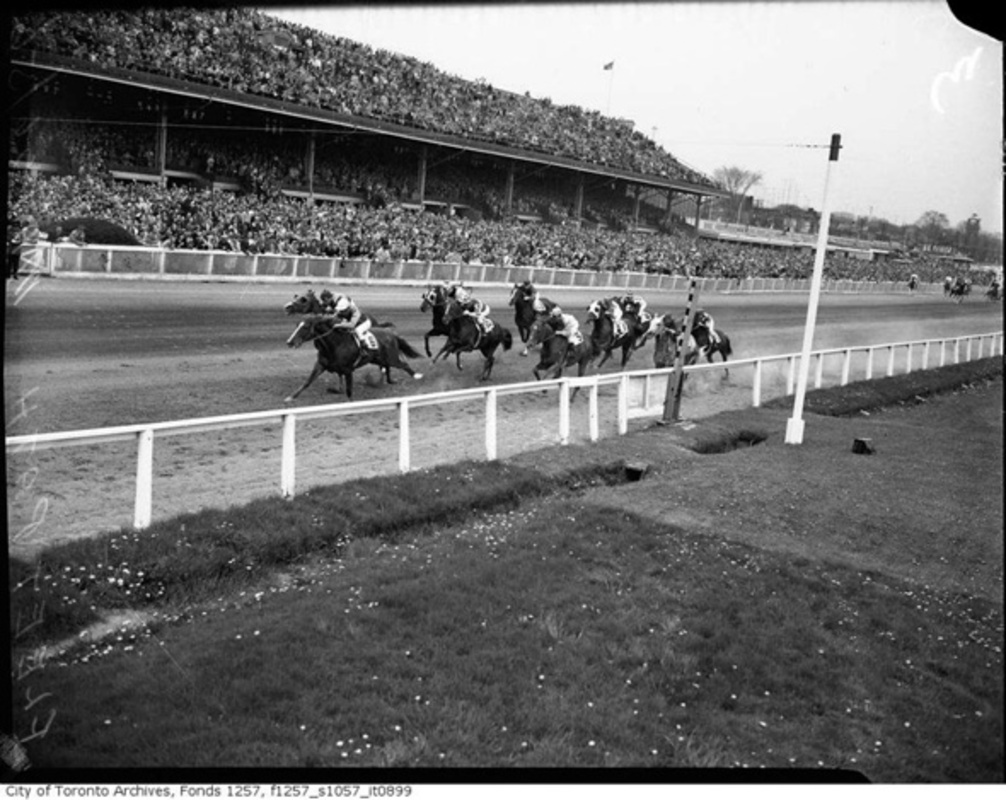 Horse racetracks Toronto