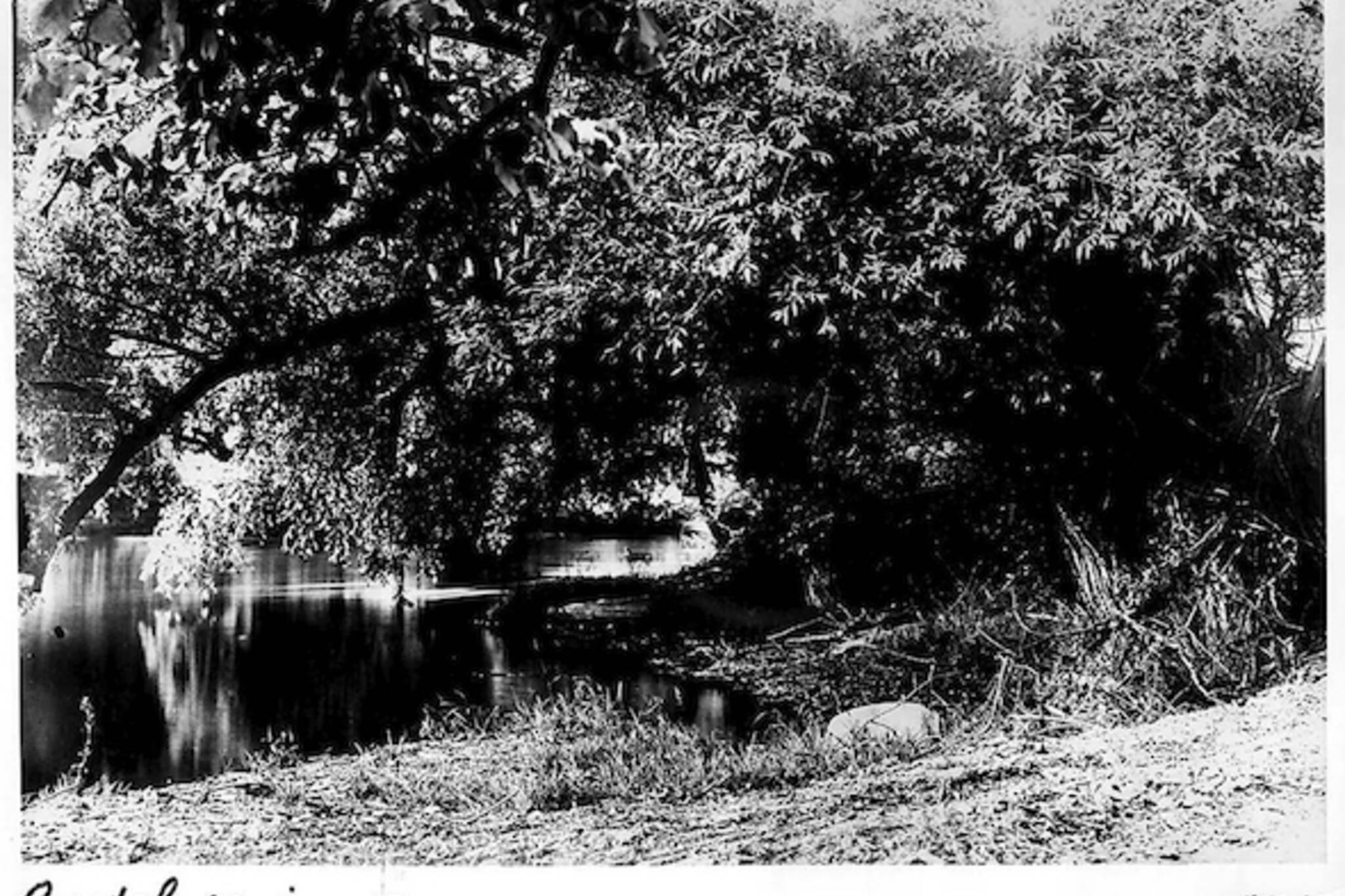 Lost Rivers Castle Frank Brook Rosedale
