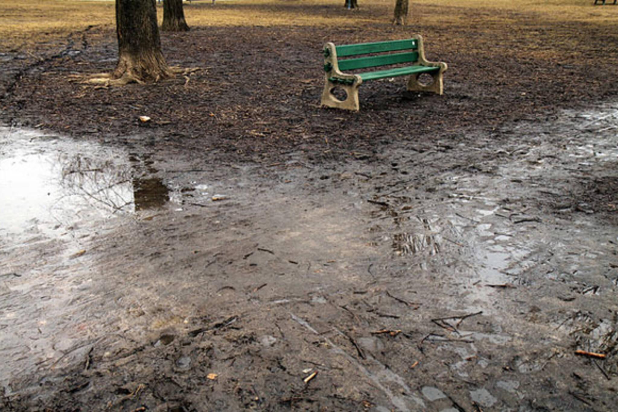 toronto mud