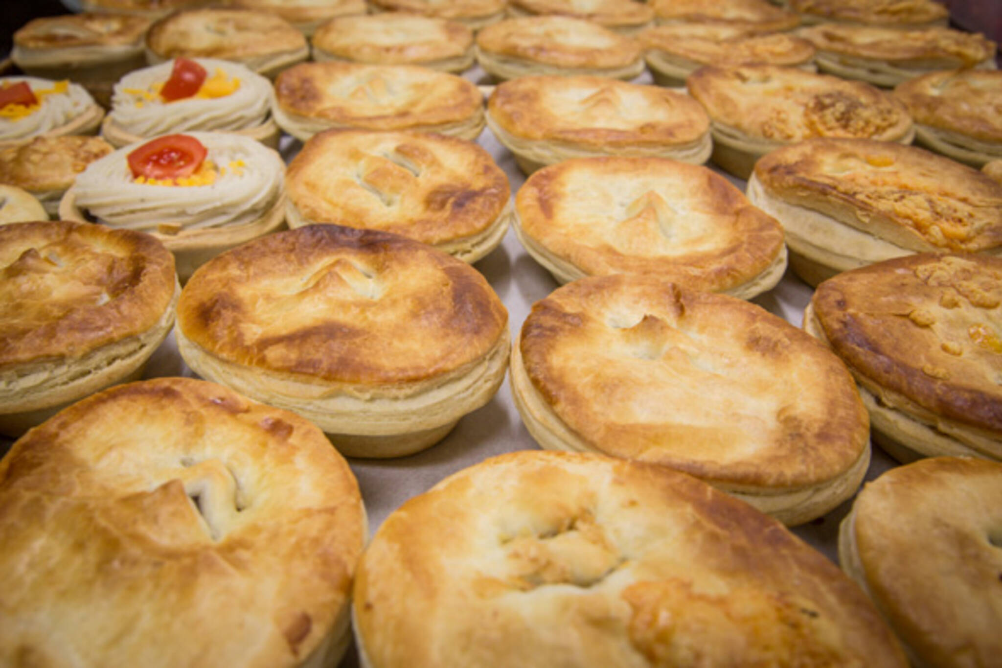 wiseys pies and bakehouse toronto