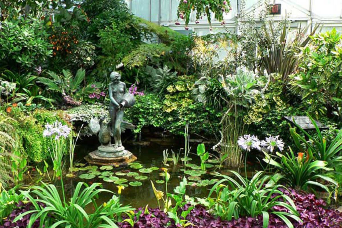 The top 5 indoor gardens in and around toronto for Indoor botanical gardens