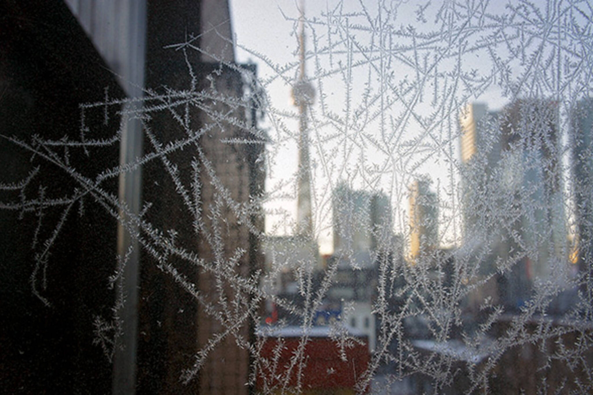 Frost Toronto