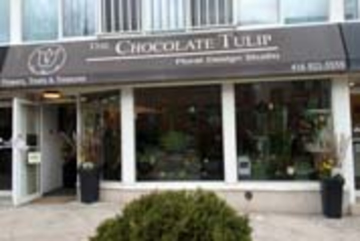 The Chocolate Tulip