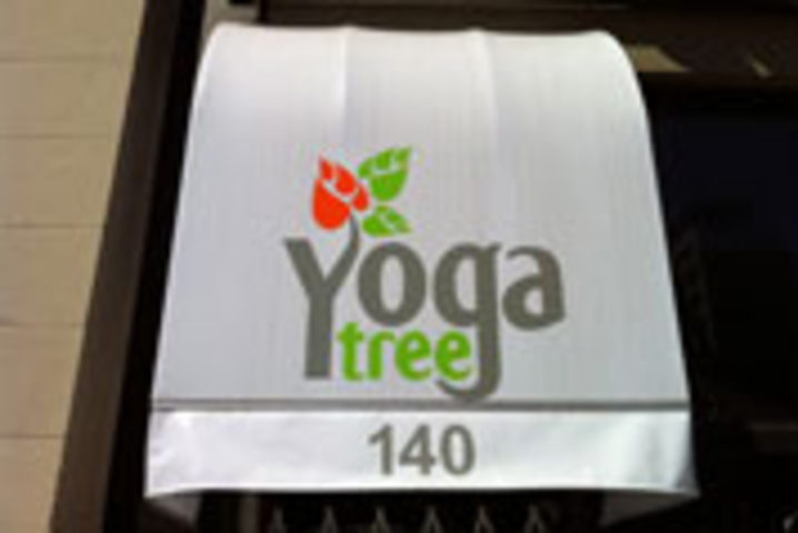 Yoga Tree (Bay & Dundas)