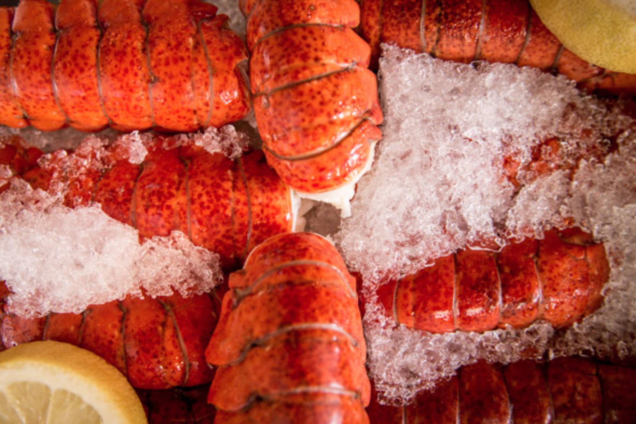 rock lobster leslieville toronto