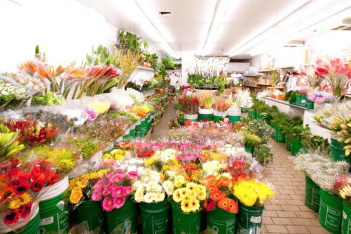 florists toronto