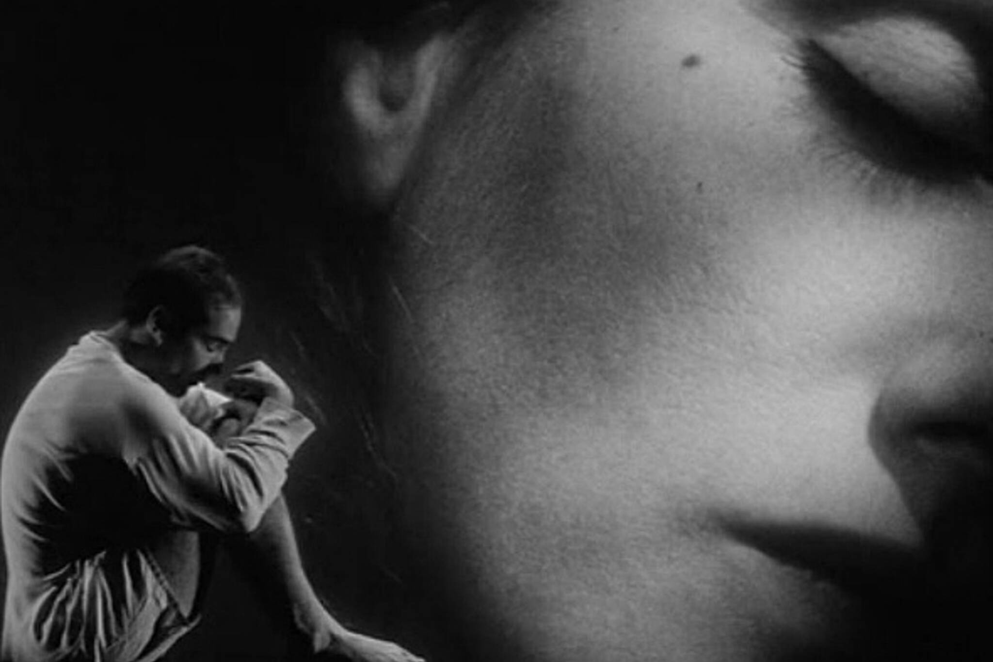 Lars Van Trier TIFF Lightbox
