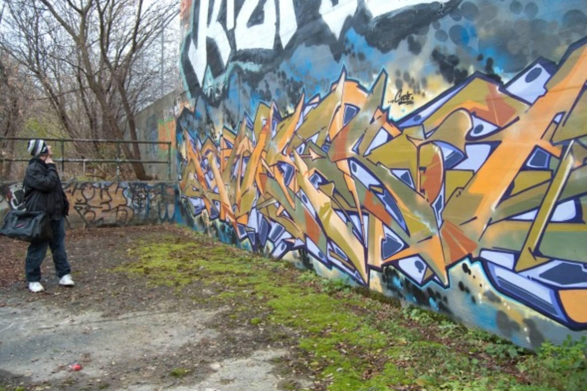Graffiti wall toronto downtown - Hidden Toronto Book