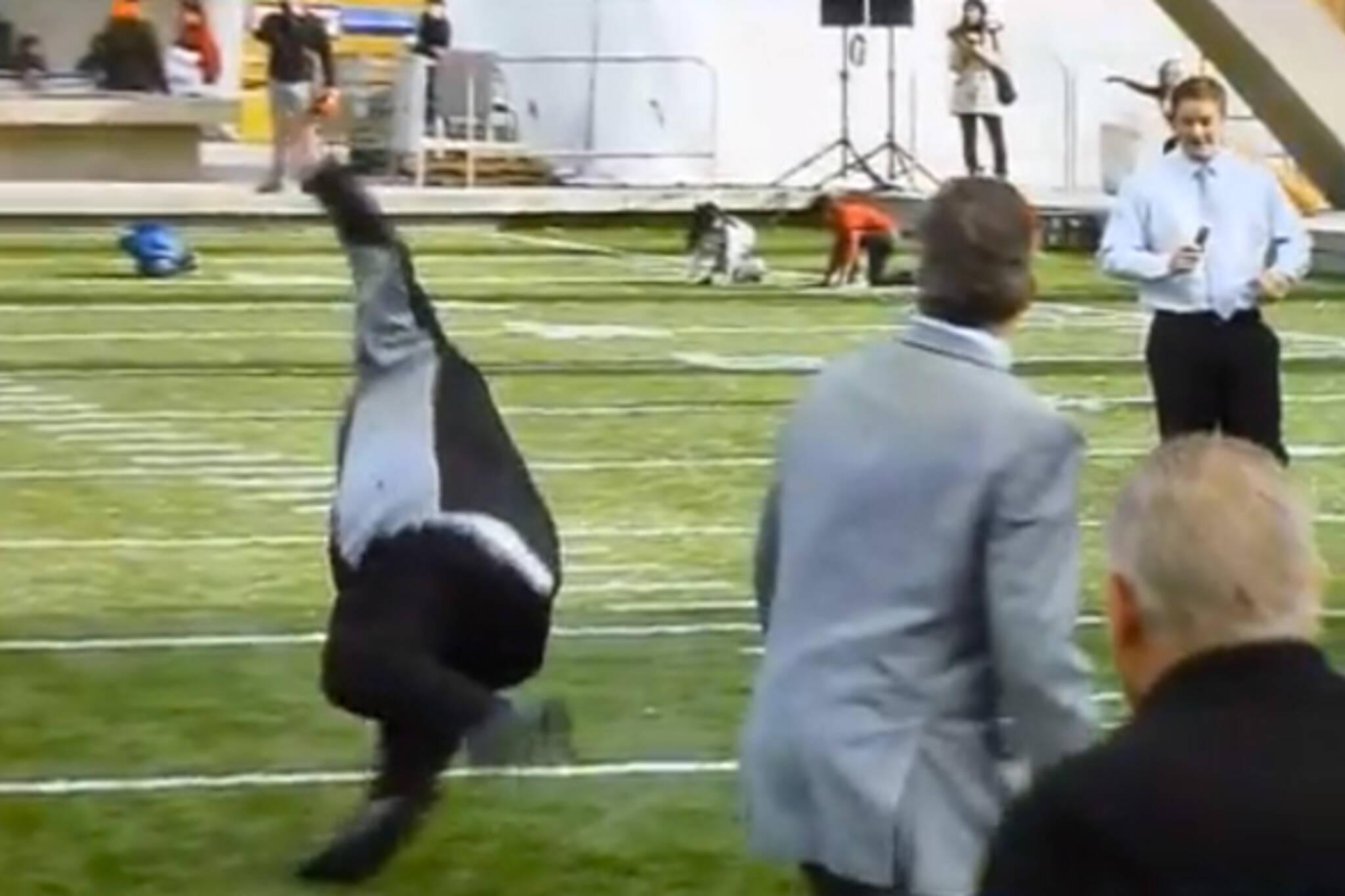 Rob Ford Falling Video