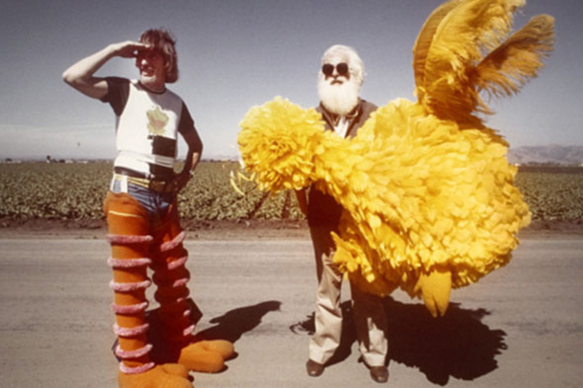 I am big bird movie