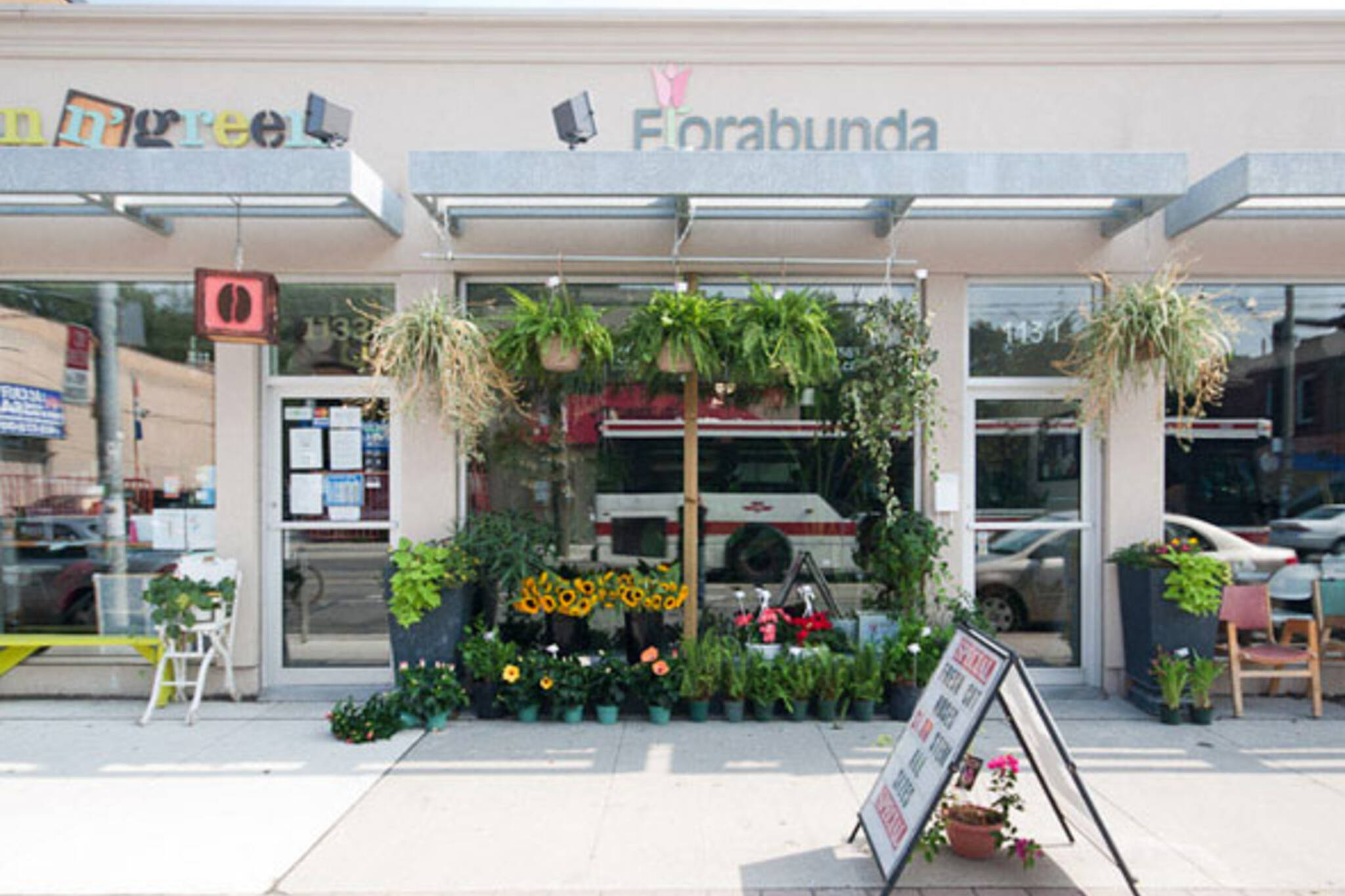 Florabunda Toronto
