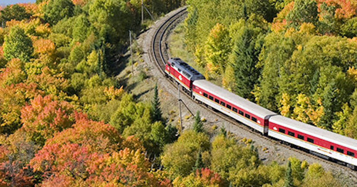 Agawa Canyon Train Tour is an epic way to see fall colours in Ontario