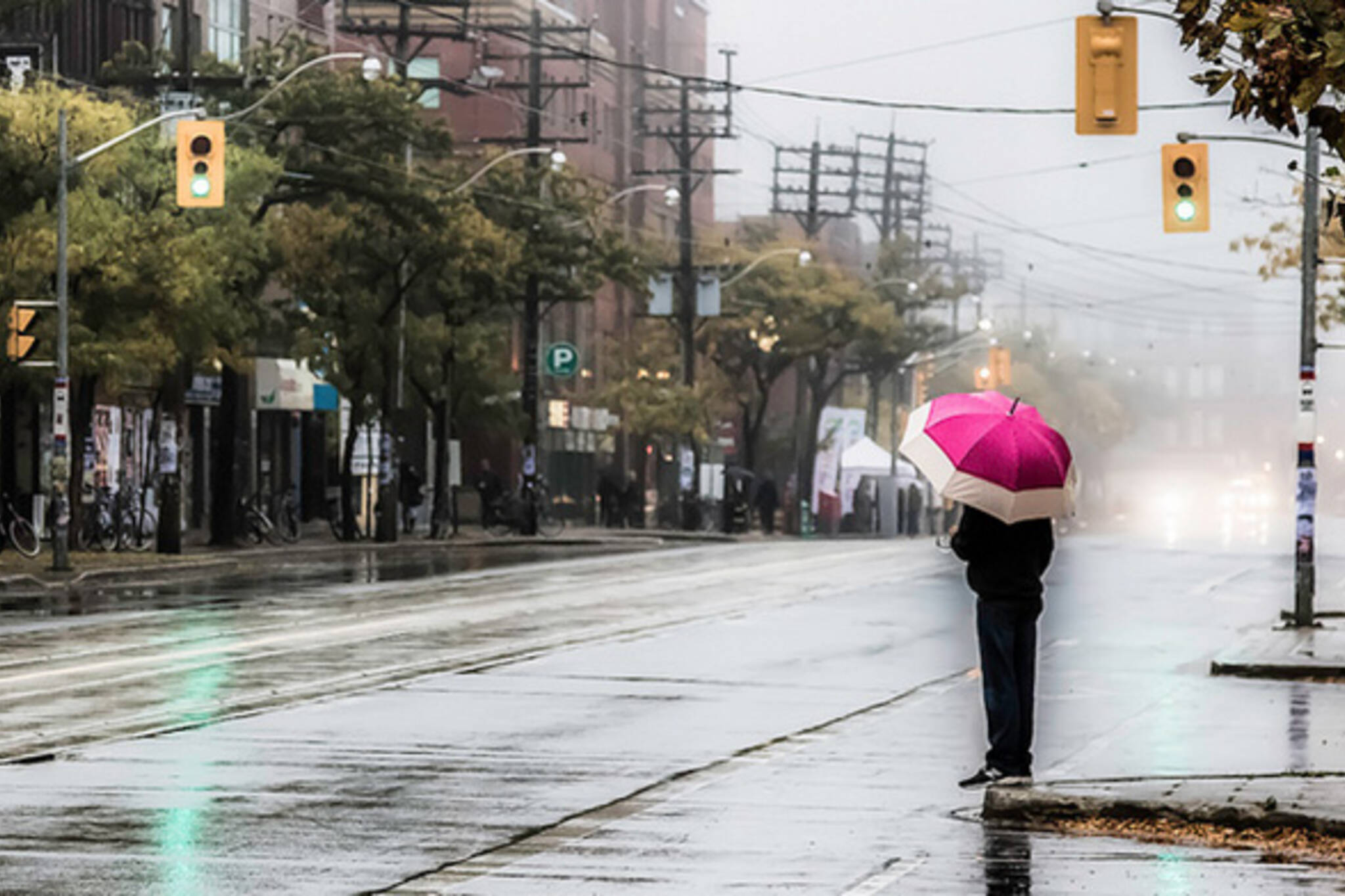 Umbrella Mist