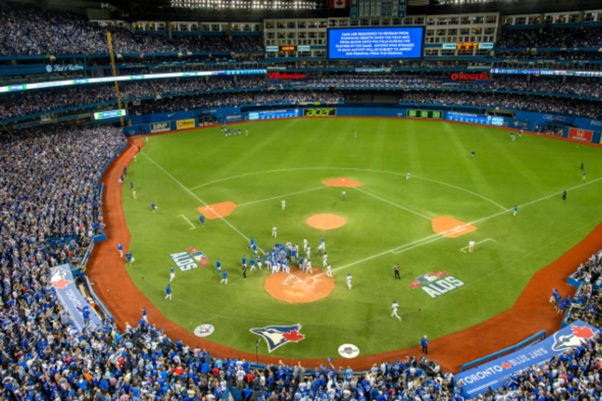 ban beer cans rogers centre