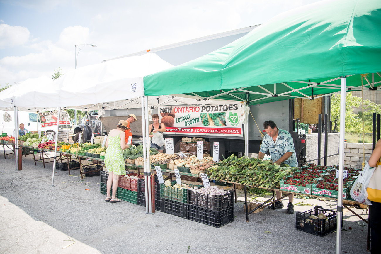 Places To Visit In Toronto >> Farmers' markets in Toronto by day of the week