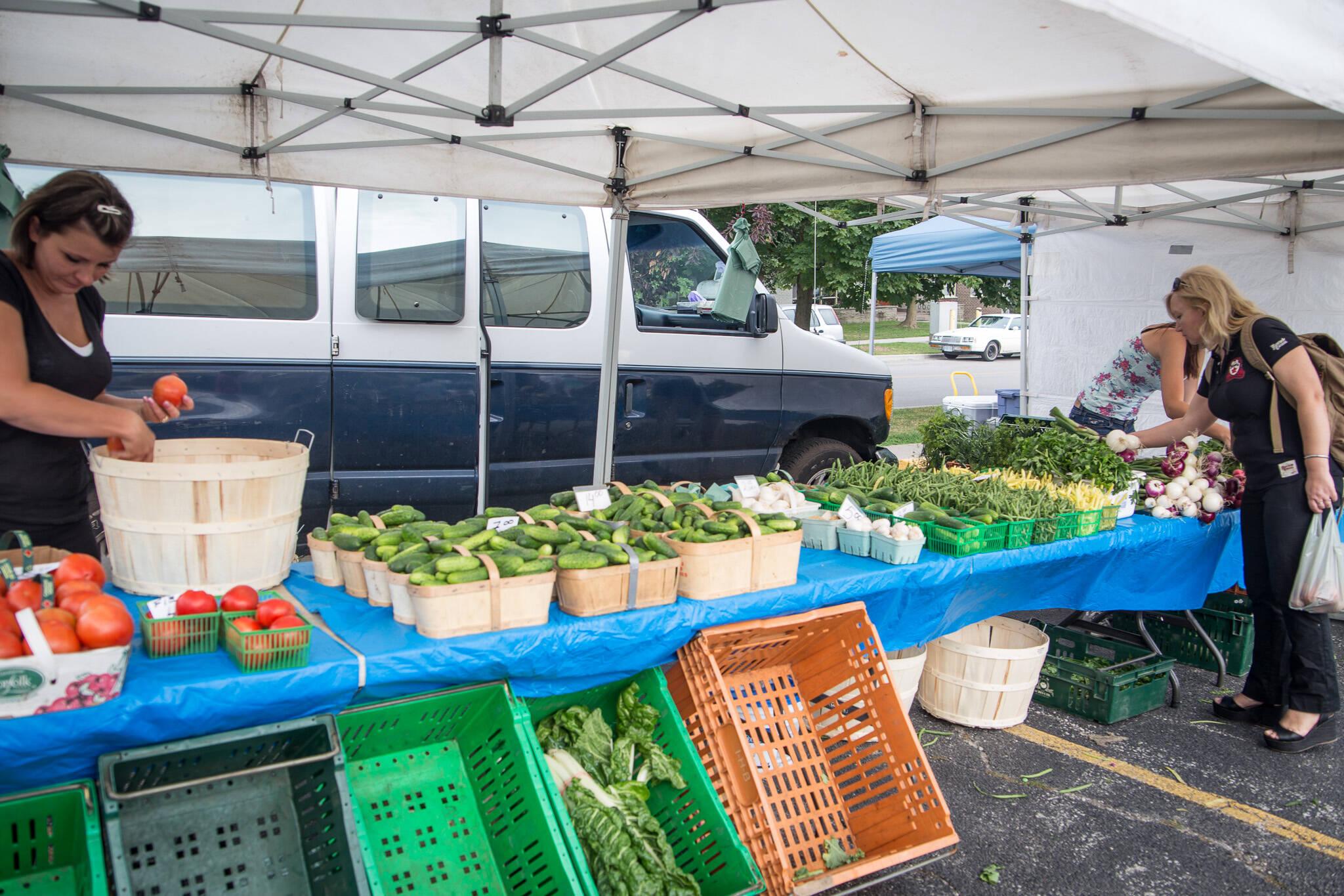 farmers markets toronto