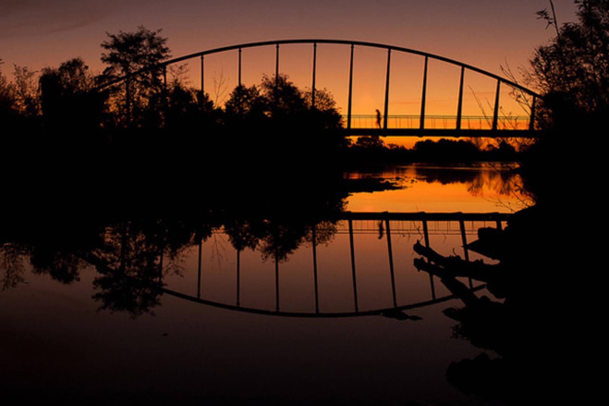 mimco, bridge, sunset