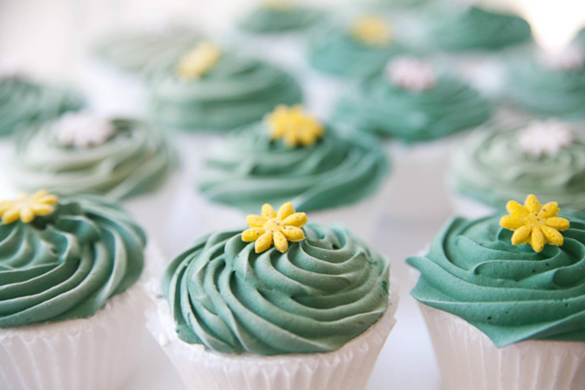 nut free cupcakes toronto