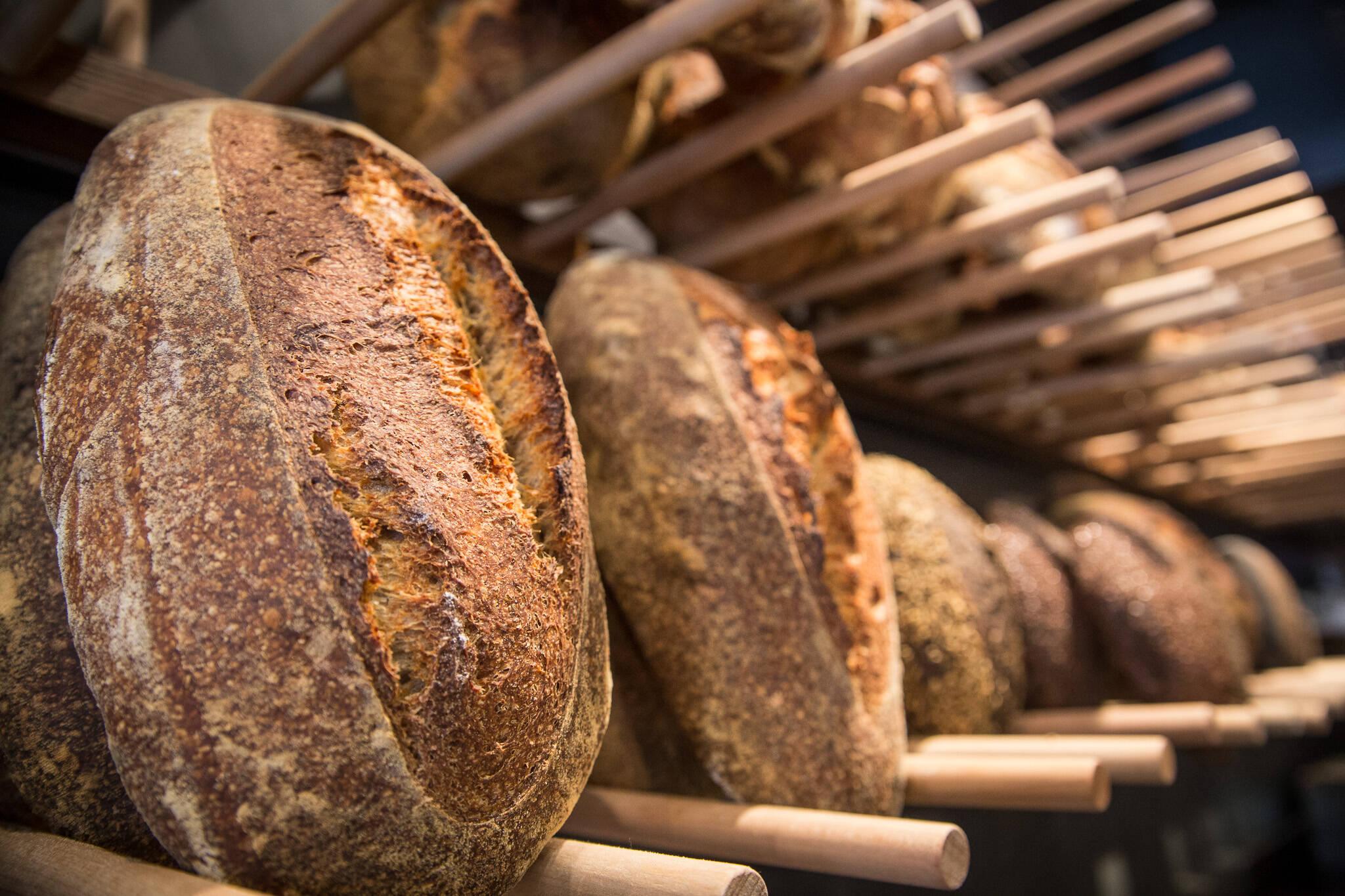 bread delivery toronto