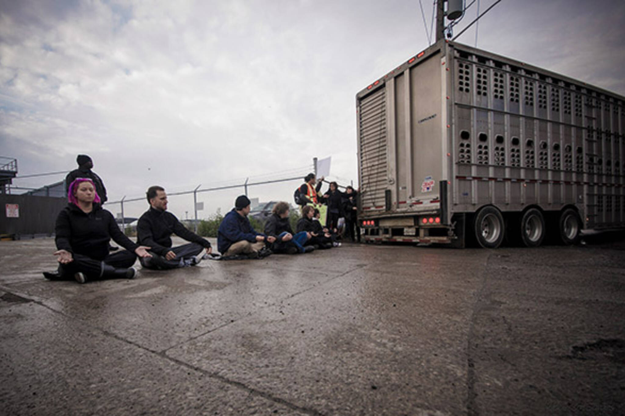 toronto slaughterhouse protest