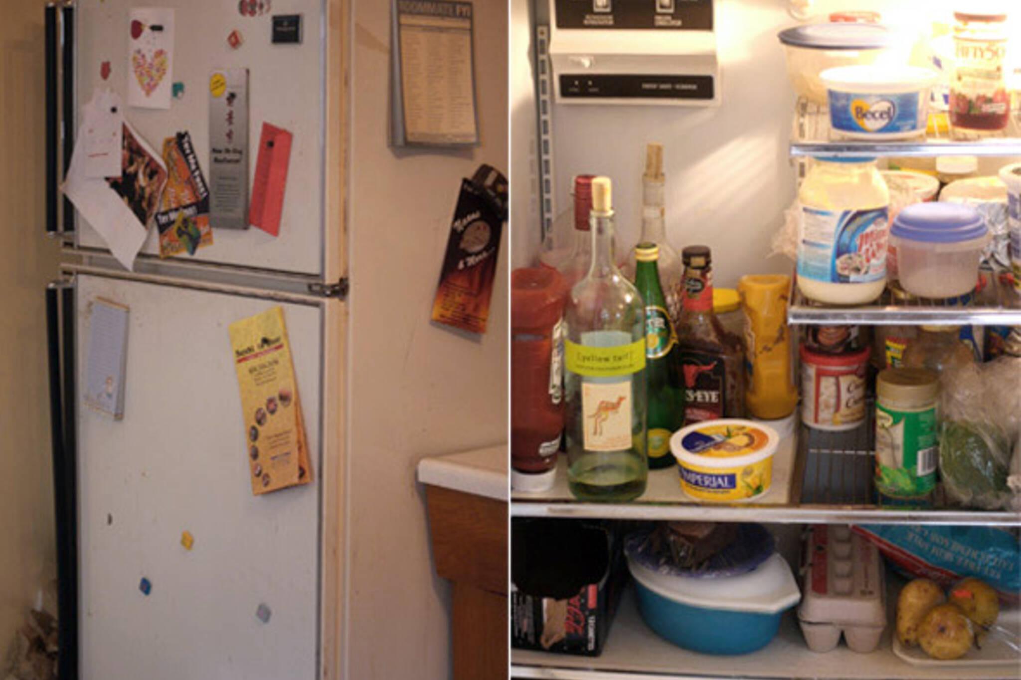 toronto fridge files