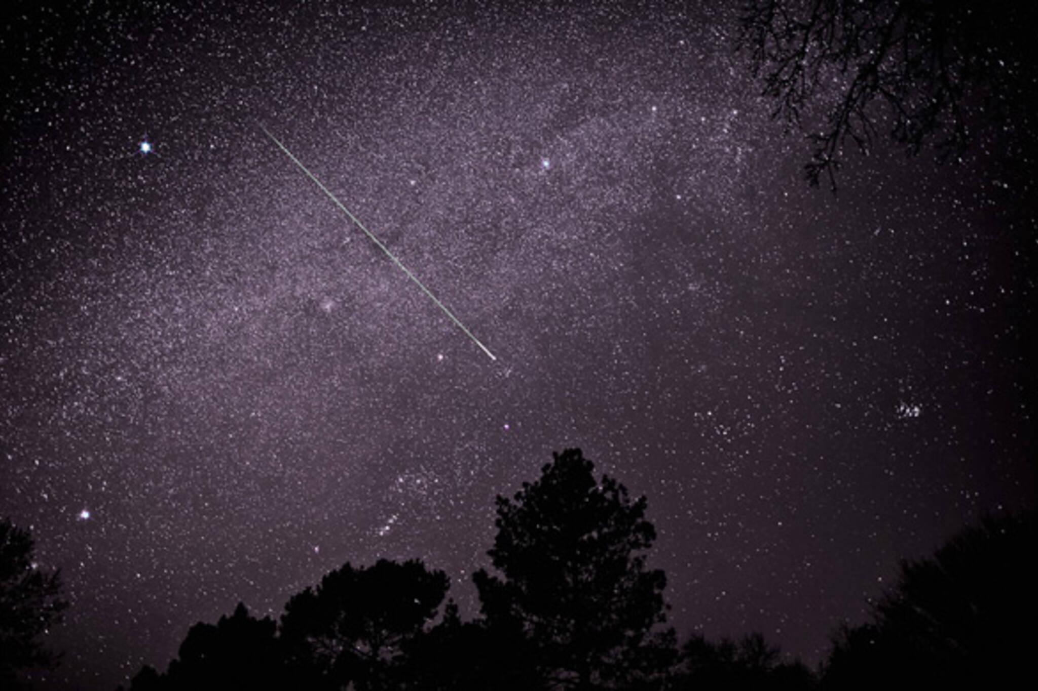 Leonids Meteor Shower 2010