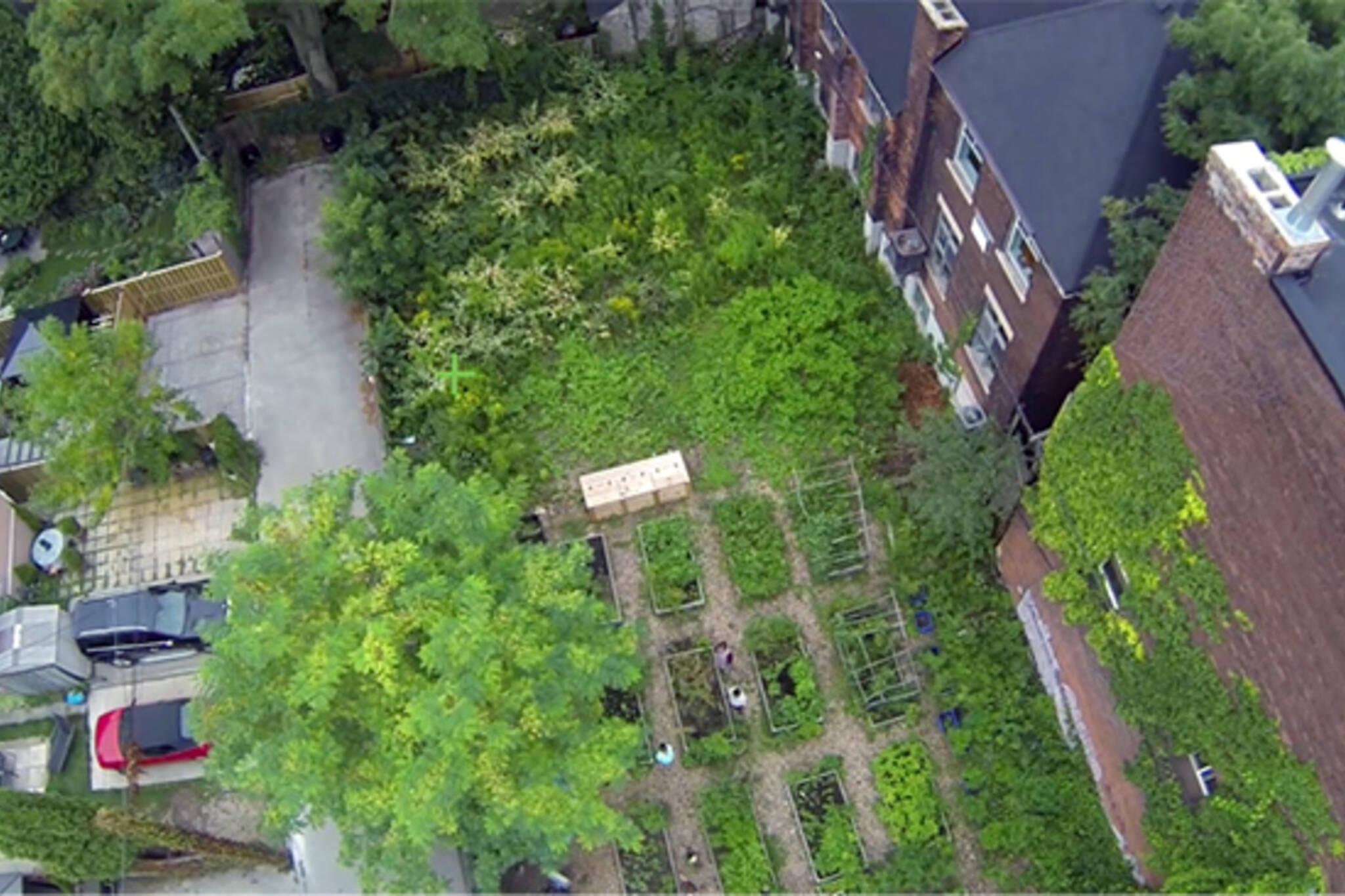 milky way public garden