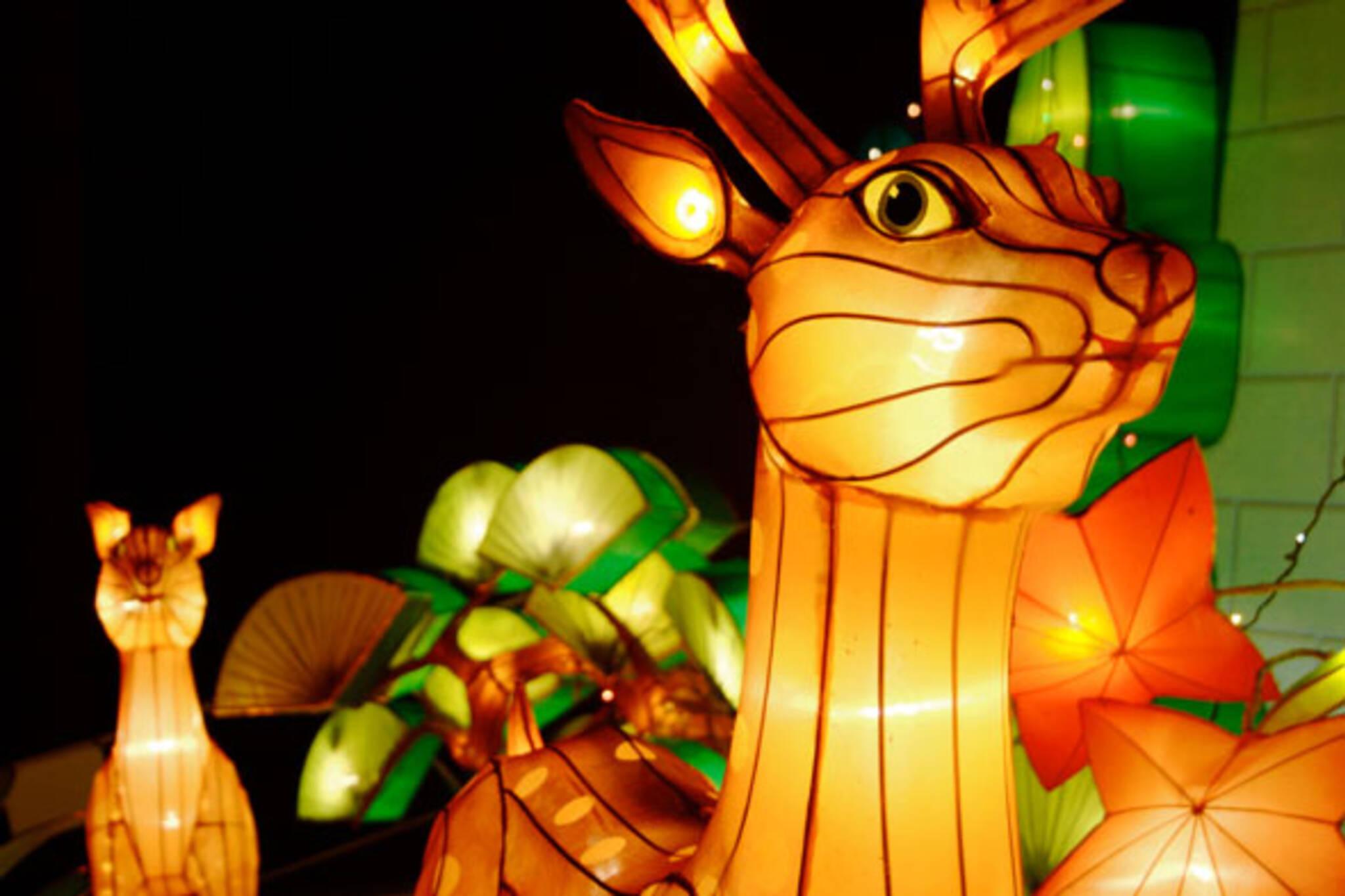 Rogers Chinese Lantern Festival