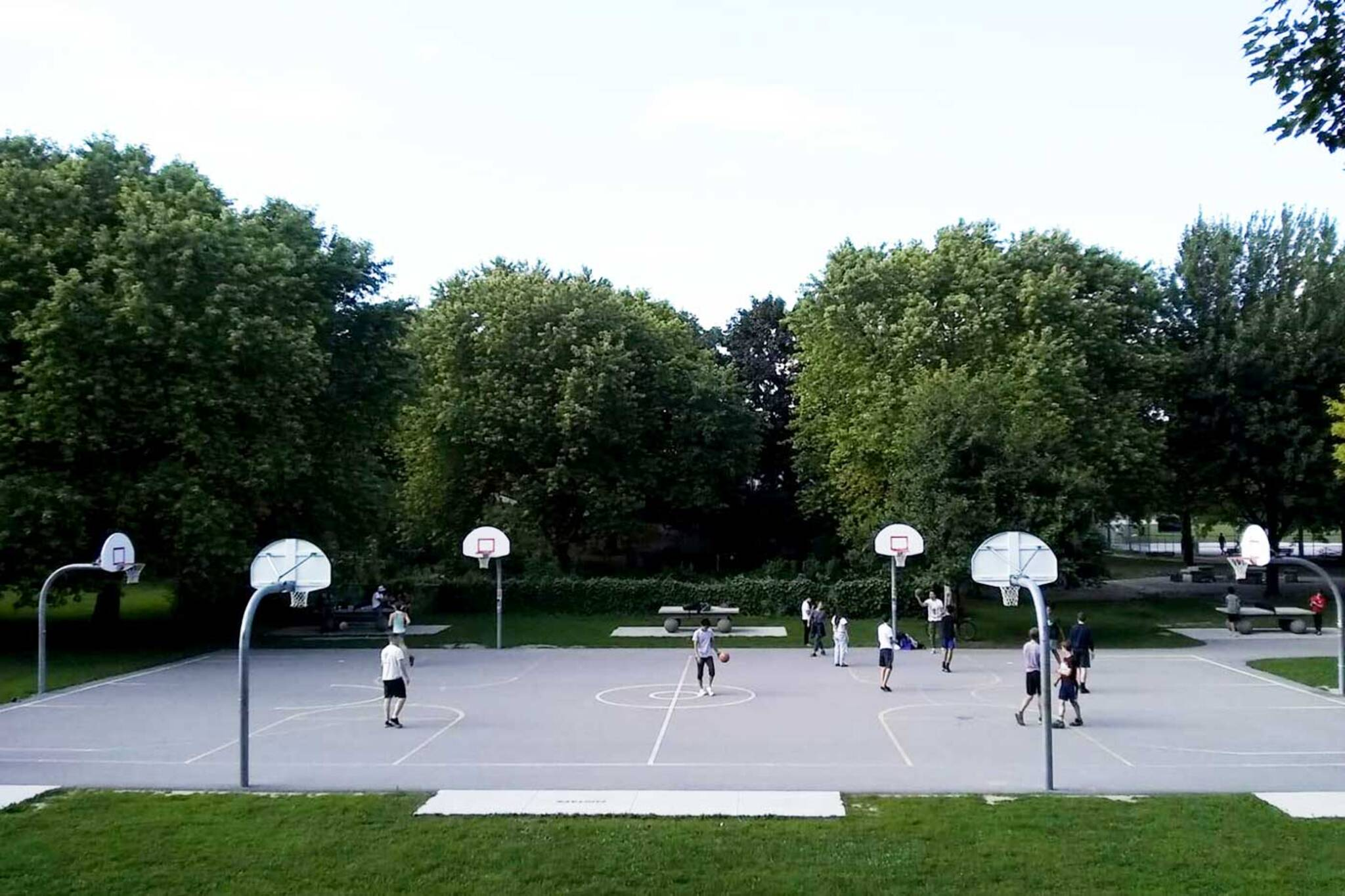 canadian tire basketball net toronto
