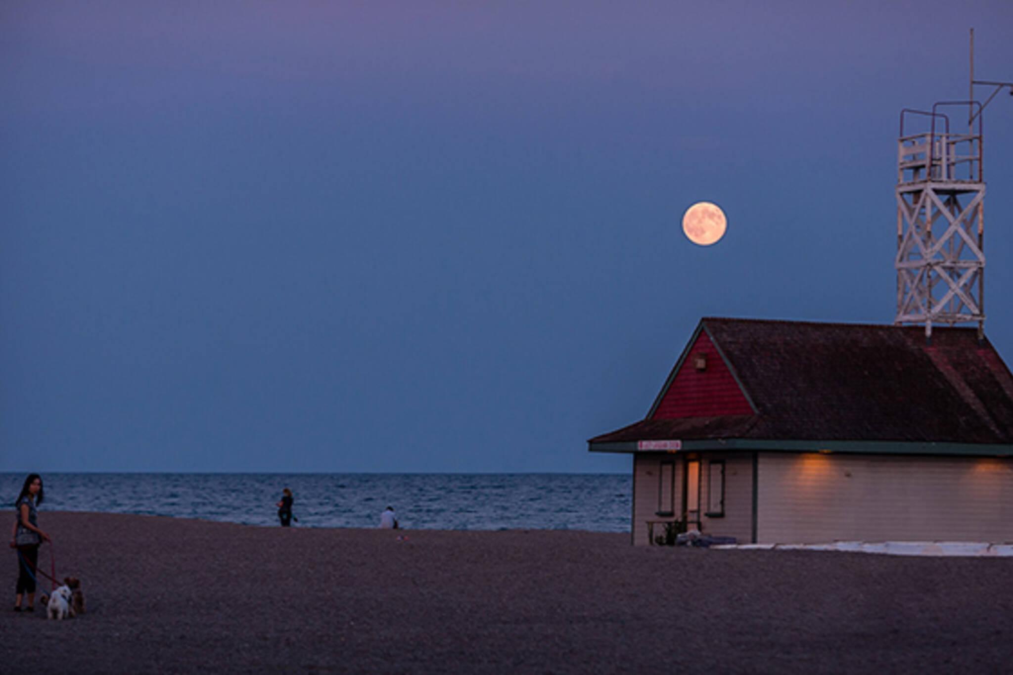 strawberry moon toronto
