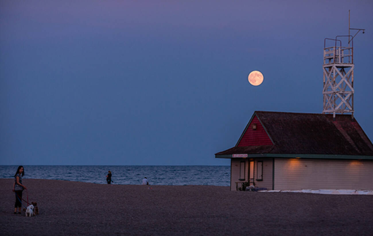 Super Rare Strawberry Moon To Rise Over Toronto Tonight