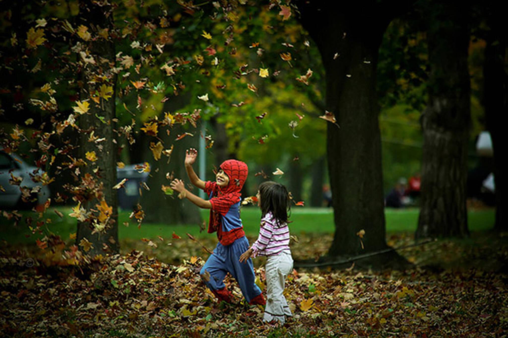 halloween, costume, fall